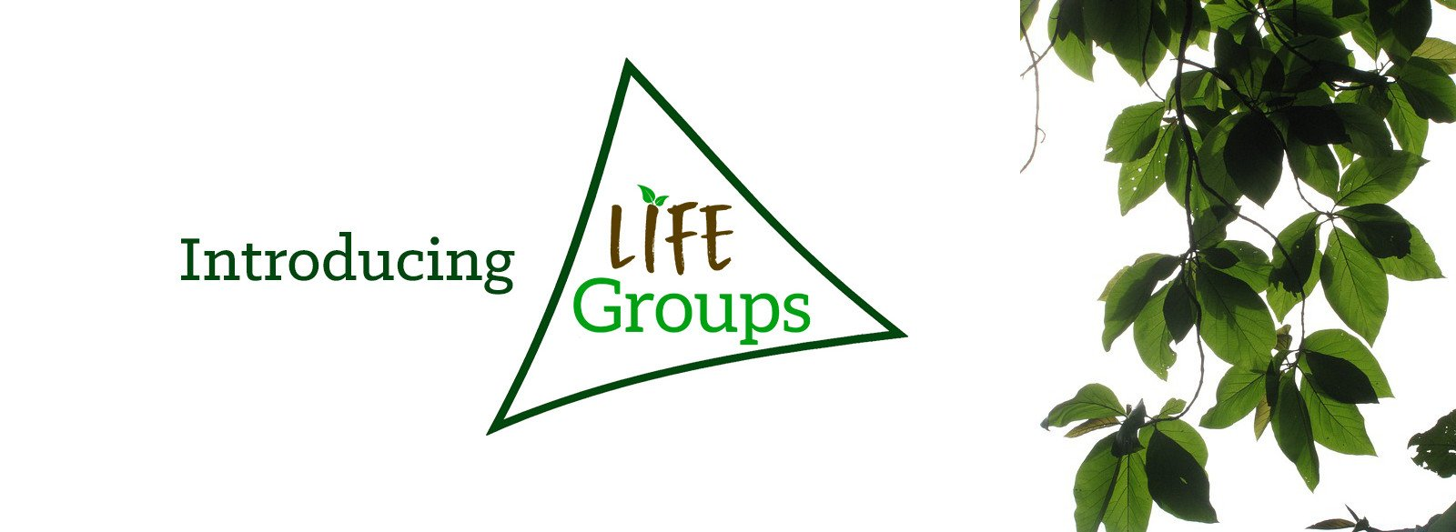 Life Groups Banner Image